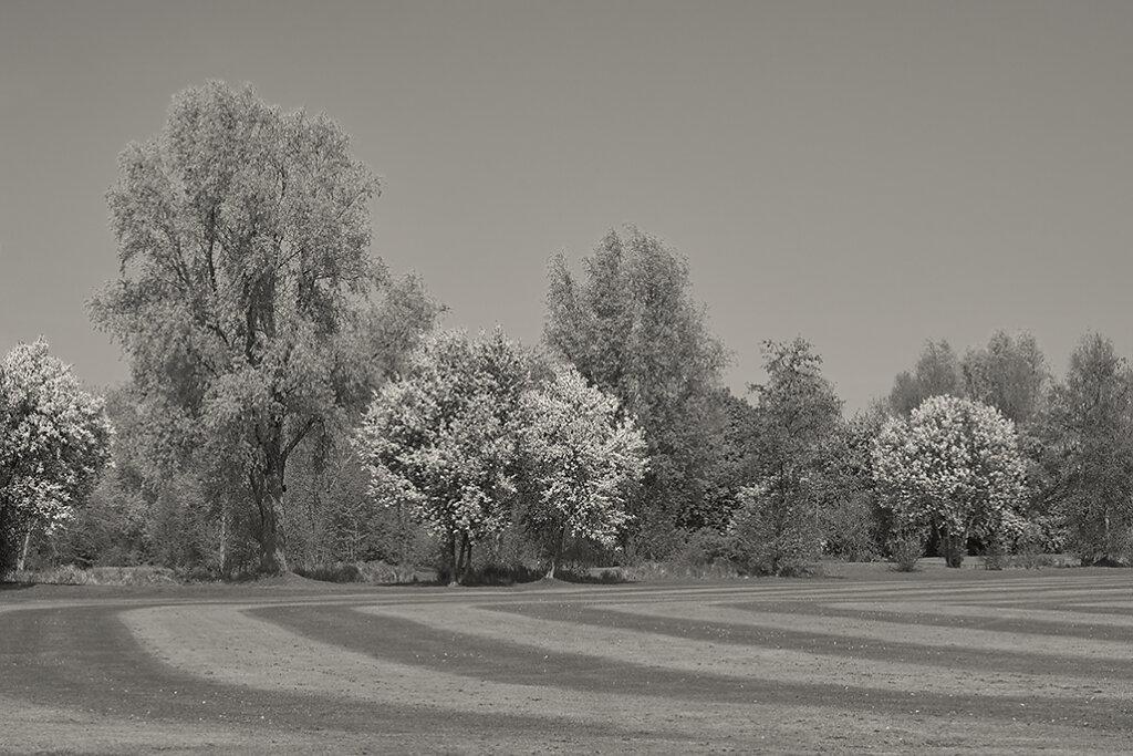 Golfclub Duvenhof e.V. Willich